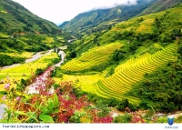 Thanh Hoa Sapa 4 Days 3 Nights Hotel and Home Stay